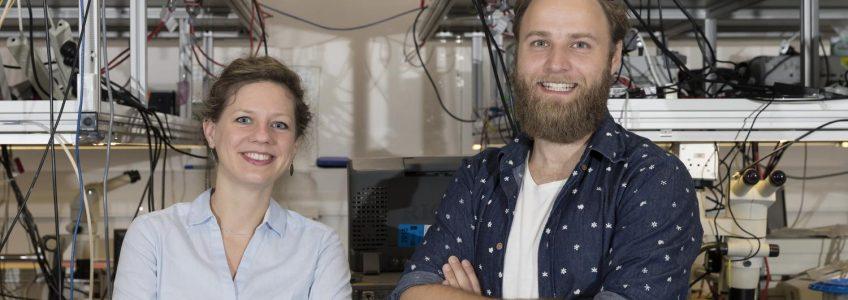Almacenan la luz como onda sonora en un chip informático