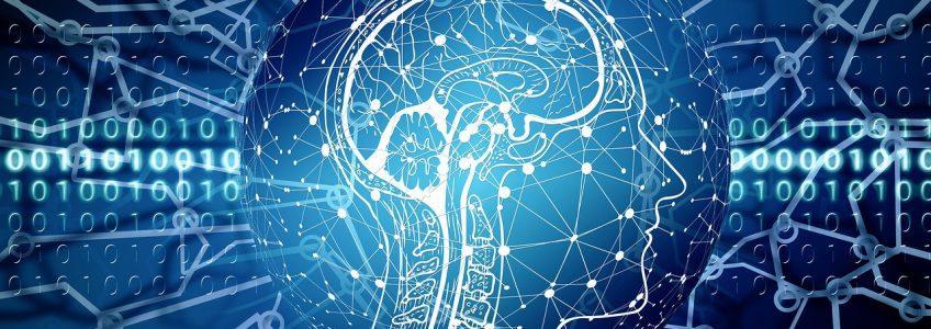 Un modelo informático decodifica el habla siguiendo las oscilaciones neuronales • Tendencias21