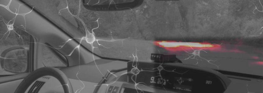 La Inteligencia Artificial logra controlar un vehículo autónomo inspirándose en un gusano • Tendencias21